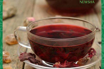 چای-ترش-نیوشا